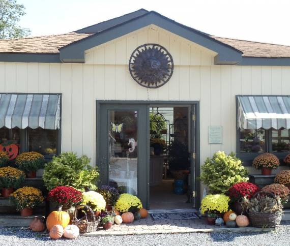 Country Greenery Cape May Store Front-Fall